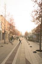 De ciudades, universidades y vida urbana