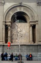 Sustitución cultural y guetización en la ciudad
